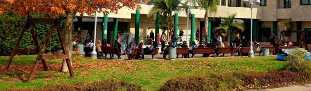 המכללה האקדמאית אחווה